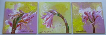 """Triptych Naked Ladies, 2011. 9"""" x 18"""""""