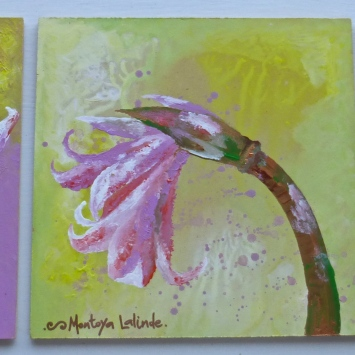 "Triptych Naked Ladies, 2011. 9"" x 18"""